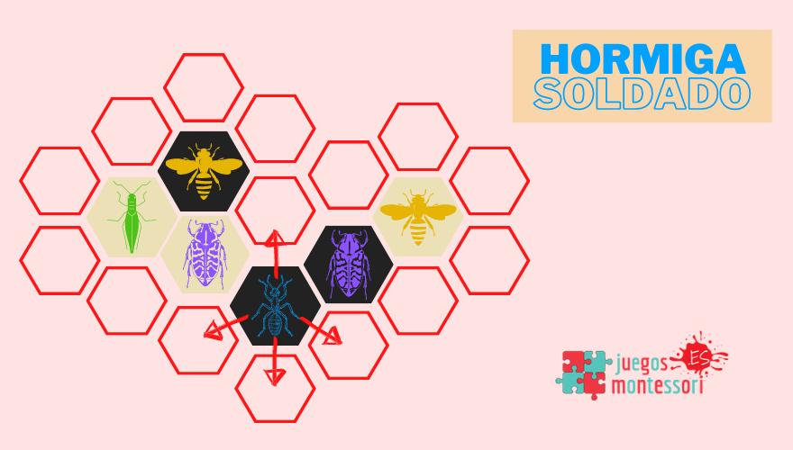 Movimientos Hormiga Soldado HIVE